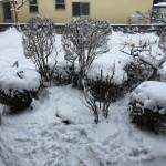 雪かきアフター